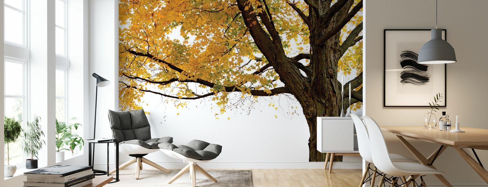 Høst Maple Tree - Tapet - Stue