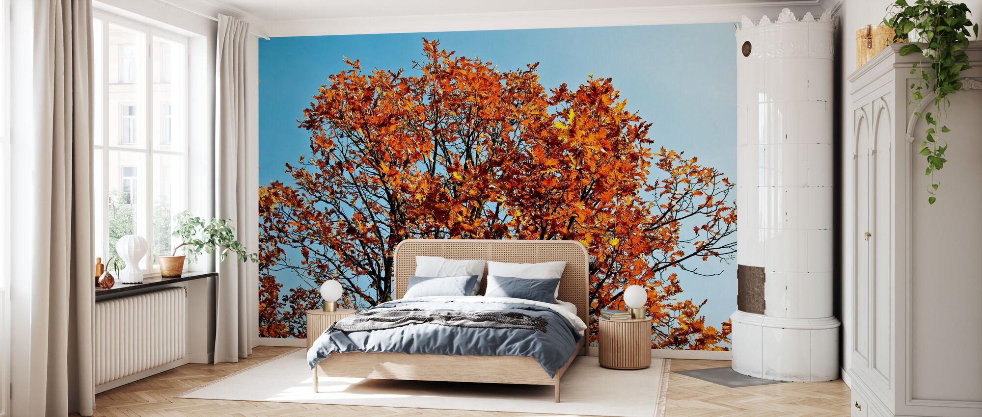 Autumn Tree and Blue Sky - Wallpaper - Bedroom