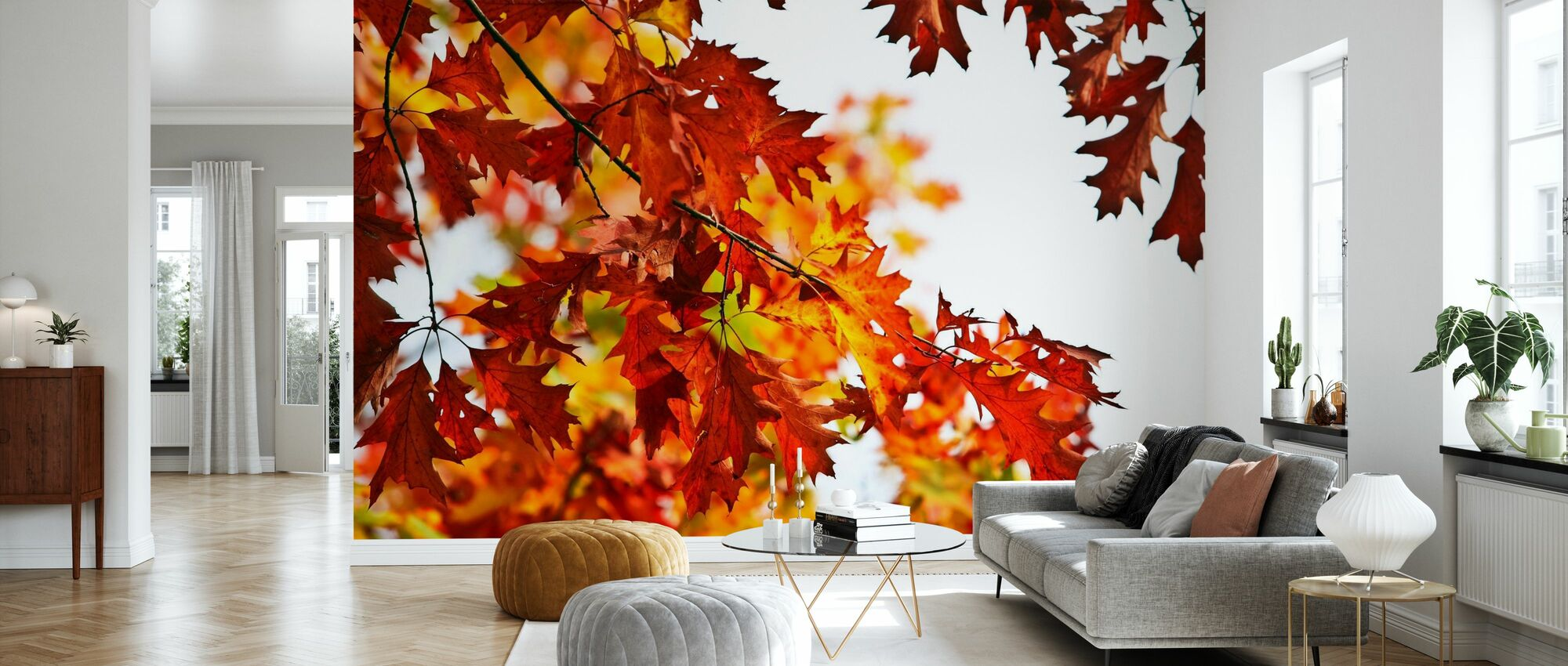 Red and Yellow Leaves - Wallpaper - Living Room