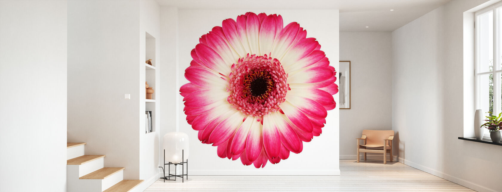 Pink Gerbera Dark - Wallpaper - Hallway