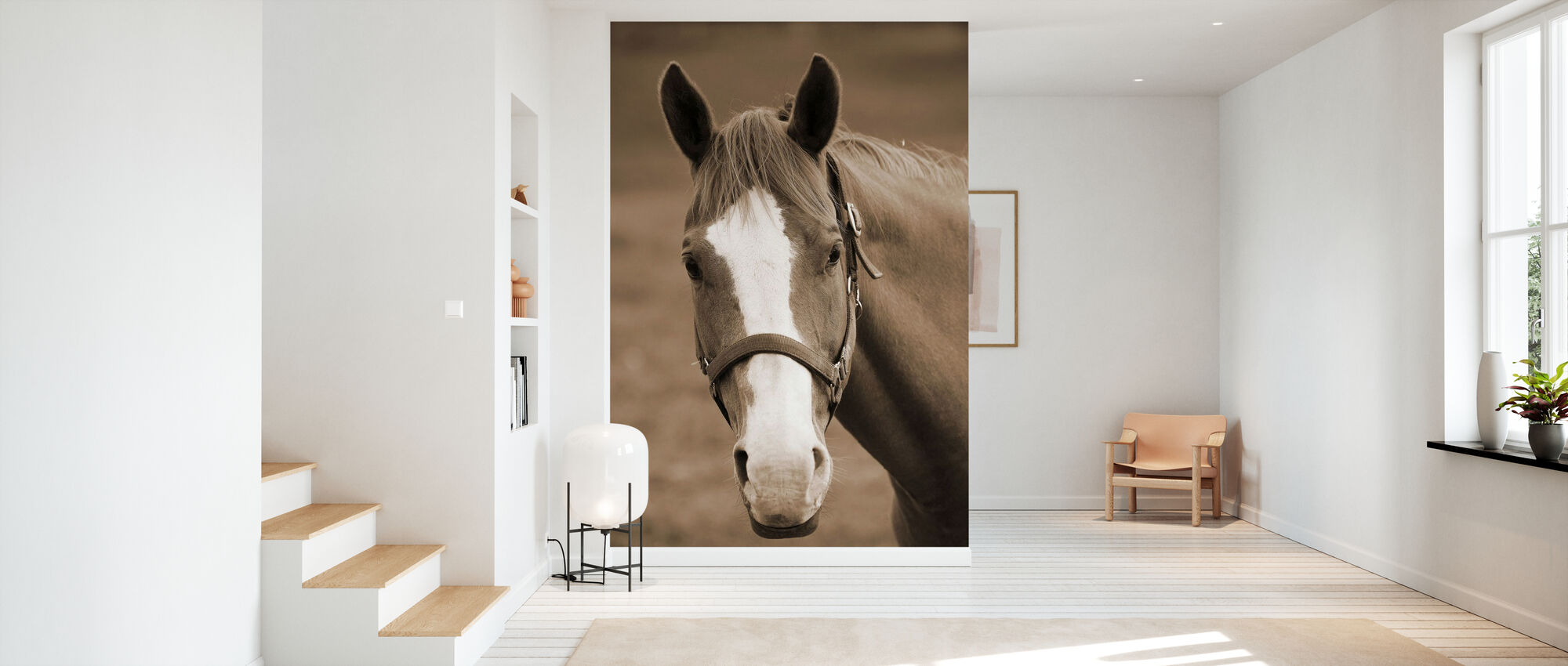 Sweet Horse - Wallpaper - Hallway