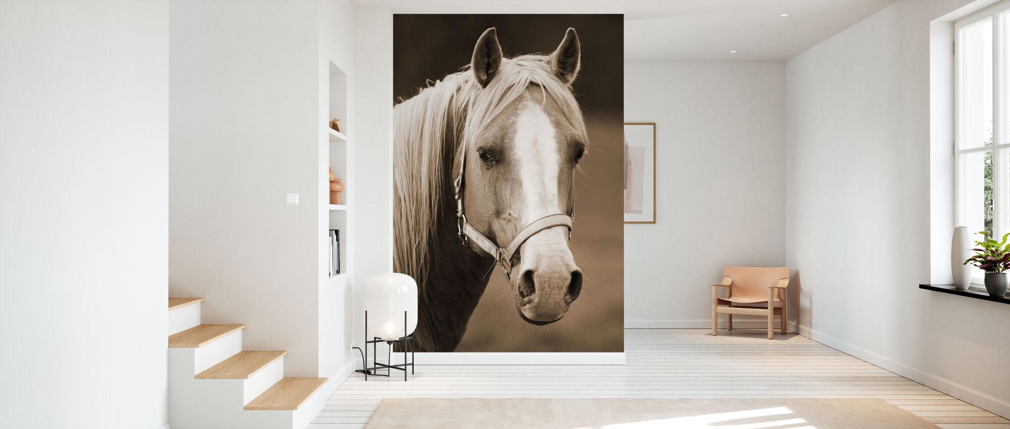 Horse - Wallpaper - Hallway