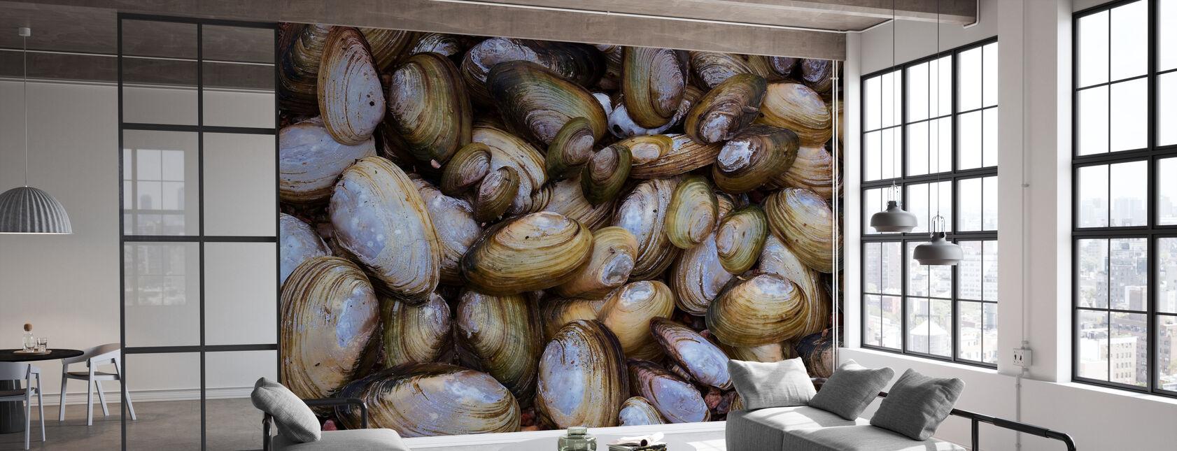 Mussel Shell - Wallpaper - Office