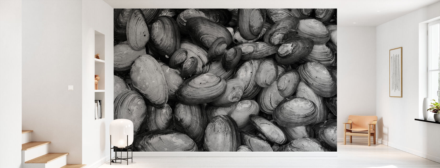 Mussel Shell - Wallpaper - Hallway