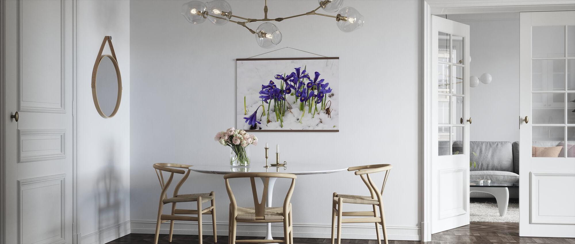Iris - Poster - Kitchen