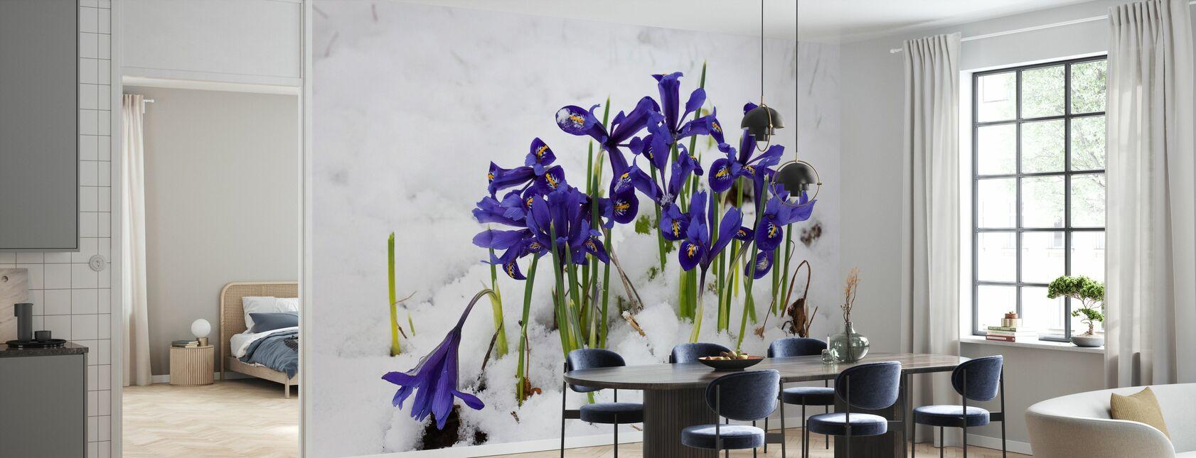 -Iris - Tapet - Kjøkken