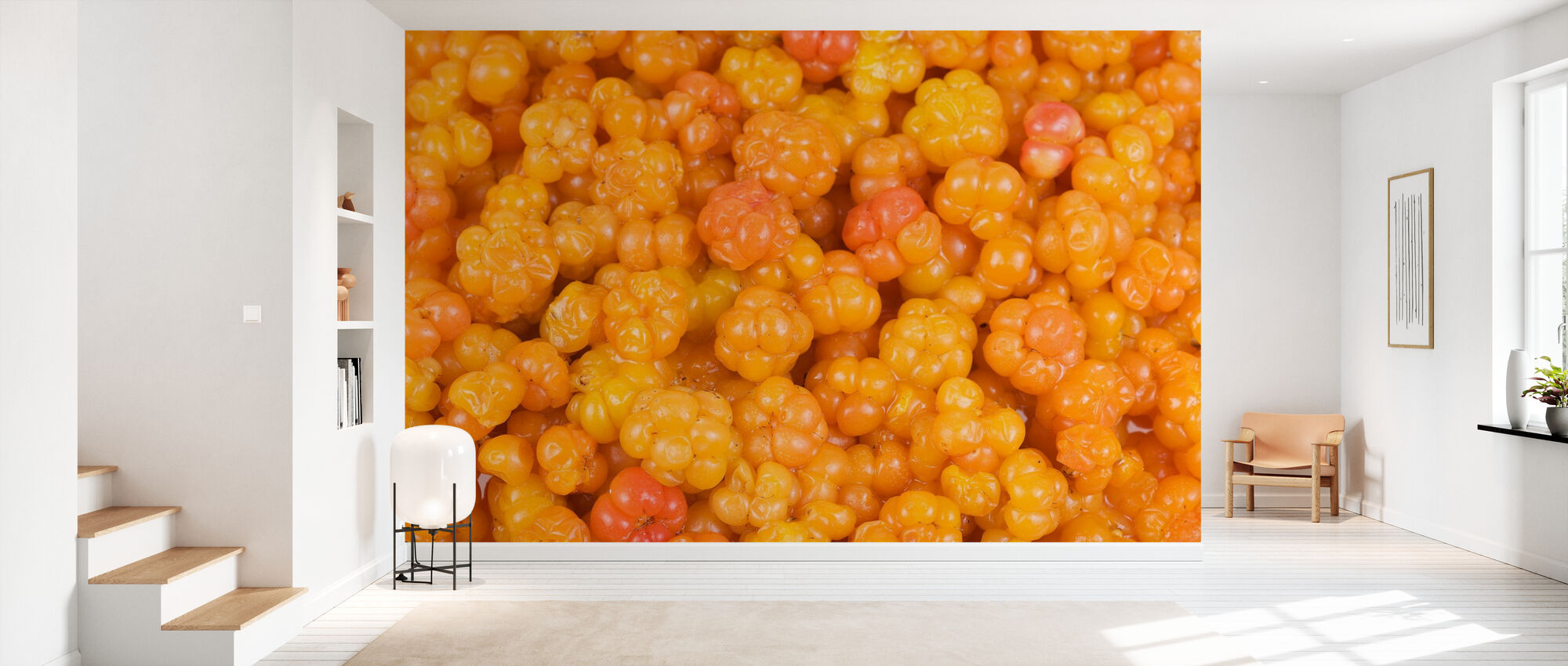 Cloudberry - Tapet - Gang