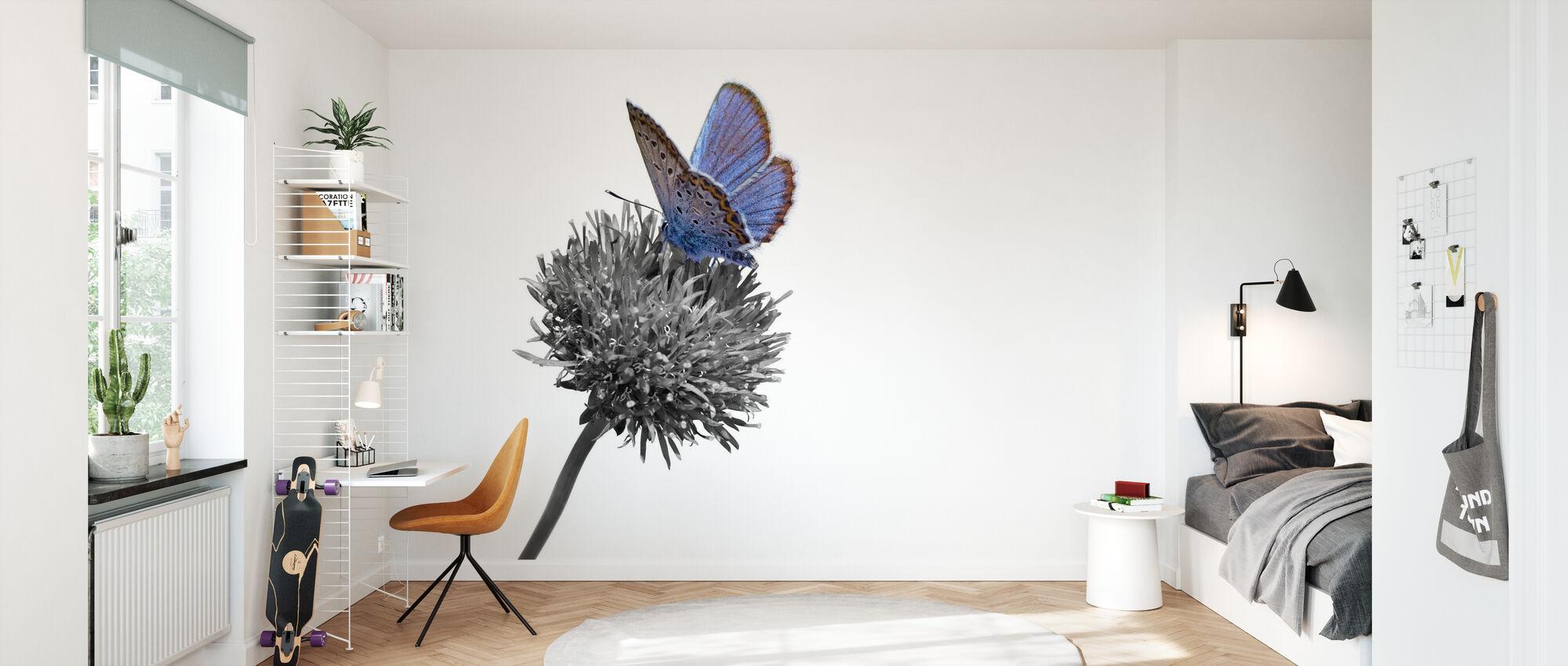 Julius fjäril - Colorsplash - Tapet - Barnrum