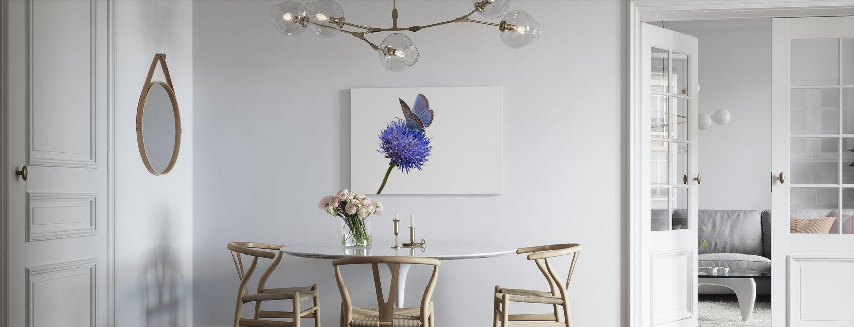 Julius Vlinder - Canvas print - Keuken