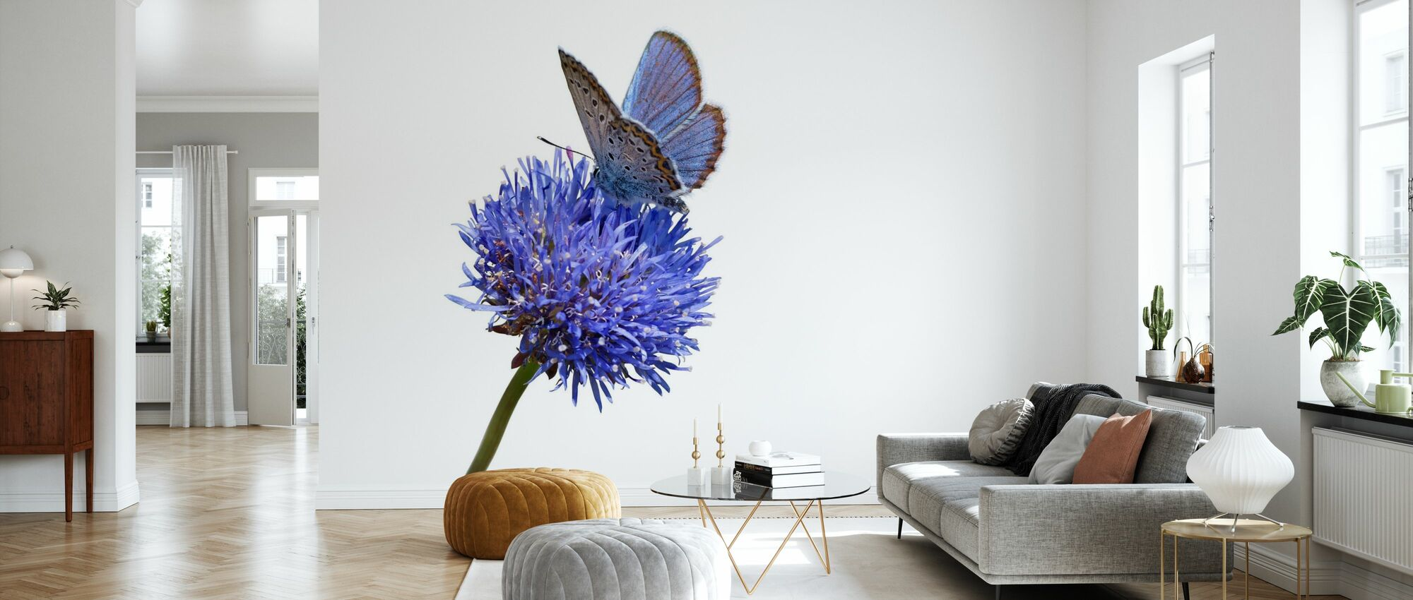 Julius Butterfly - Wallpaper - Living Room