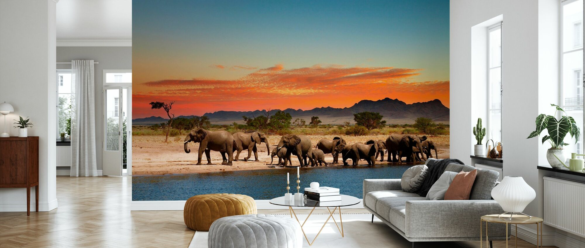Herd of Elephants - Wallpaper - Living Room