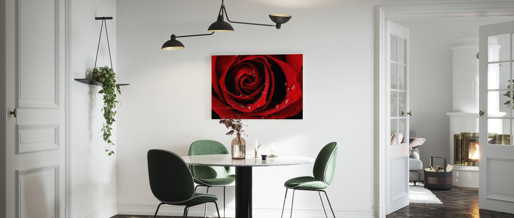 Dark Red Rose - Canvas print - Kitchen