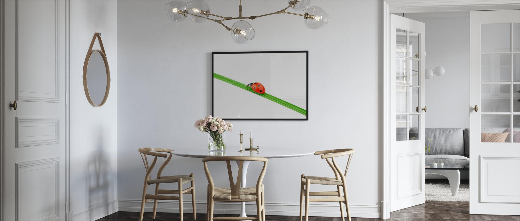 Nyckelpiga på ett halm - Inramad tavla - Kök