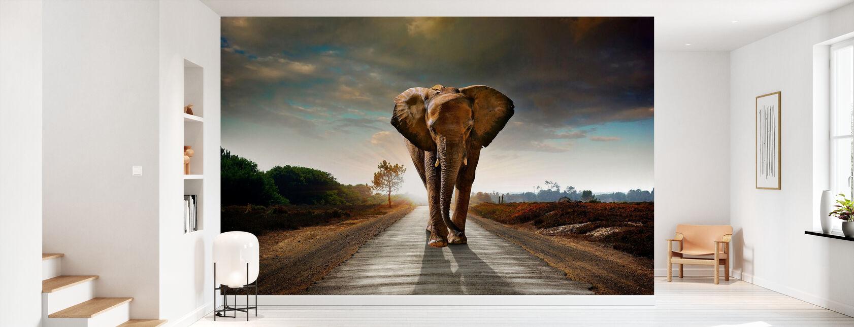 Elephant Road - Tapet - Gang