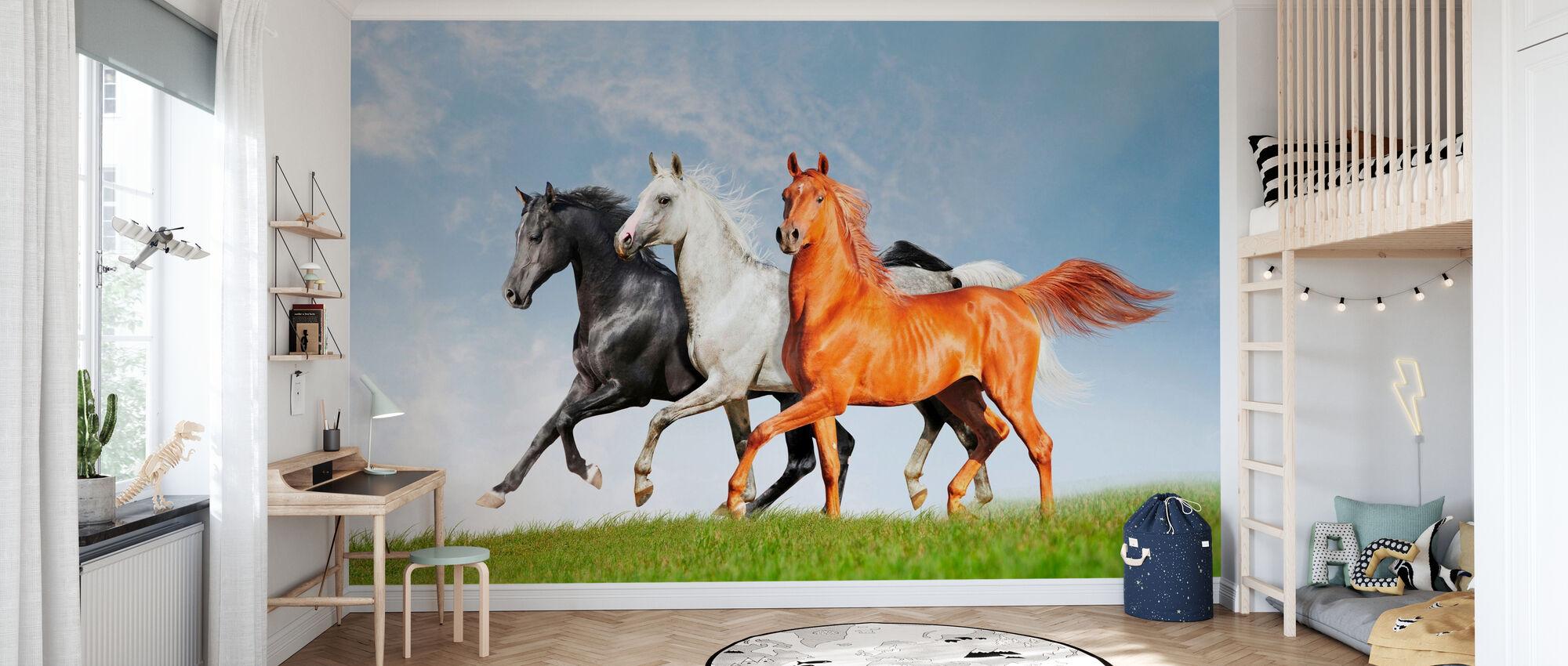 Arab Horses Run Free - Wallpaper - Kids Room