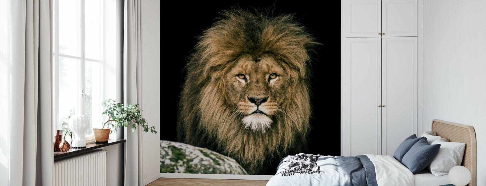 Leeuw - Behang - Slaapkamer
