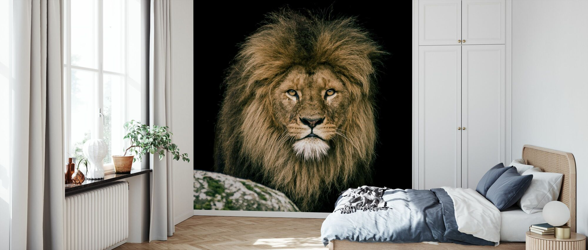 Lion - Wallpaper - Bedroom