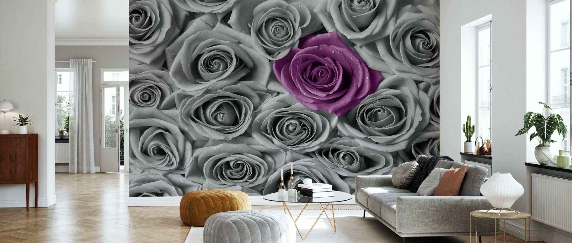 Roses Purple And Grey Decoration Murale Populaire Photowall