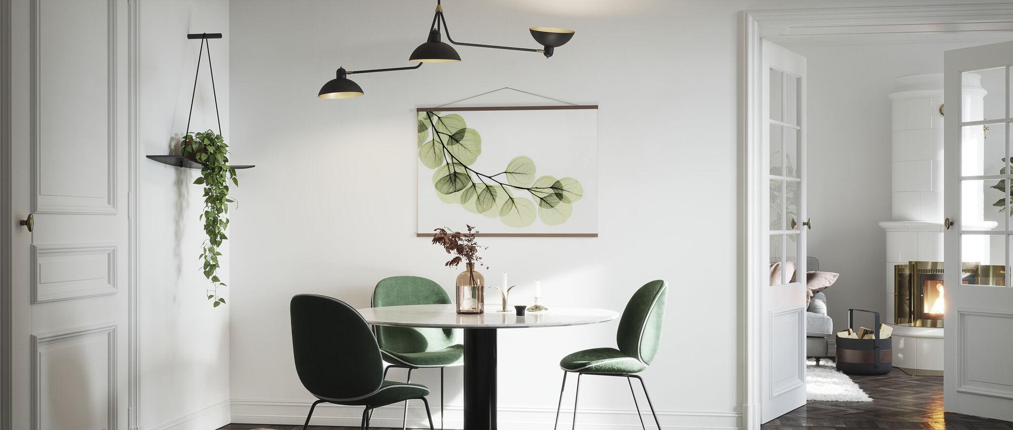 Eucalyptus - Poster - Kitchen