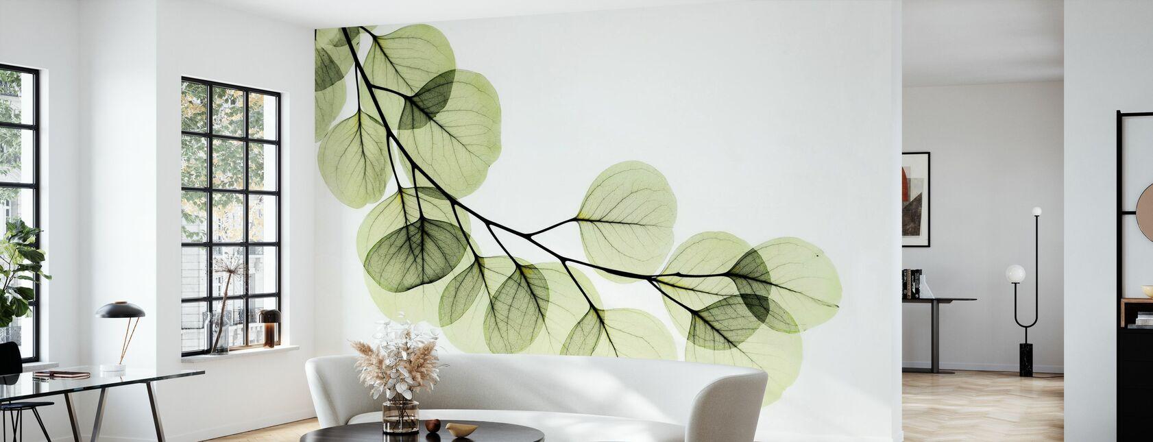Eukalyptus - Tapet - Stue