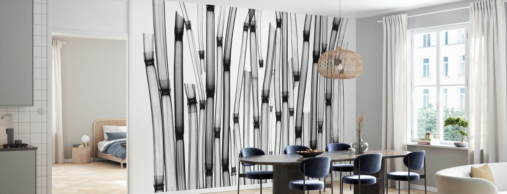 Horsetail - Wallpaper - Kitchen