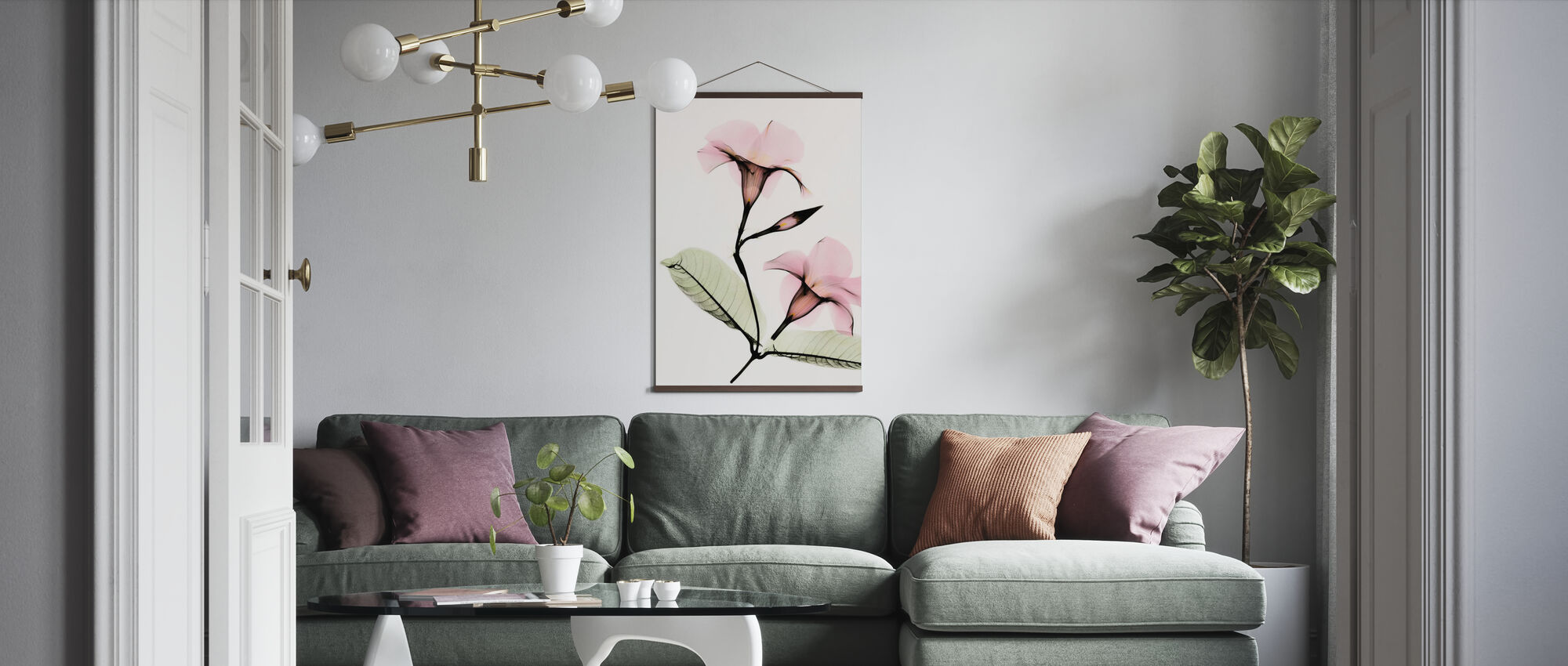 Mandevilla - Poster - Living Room