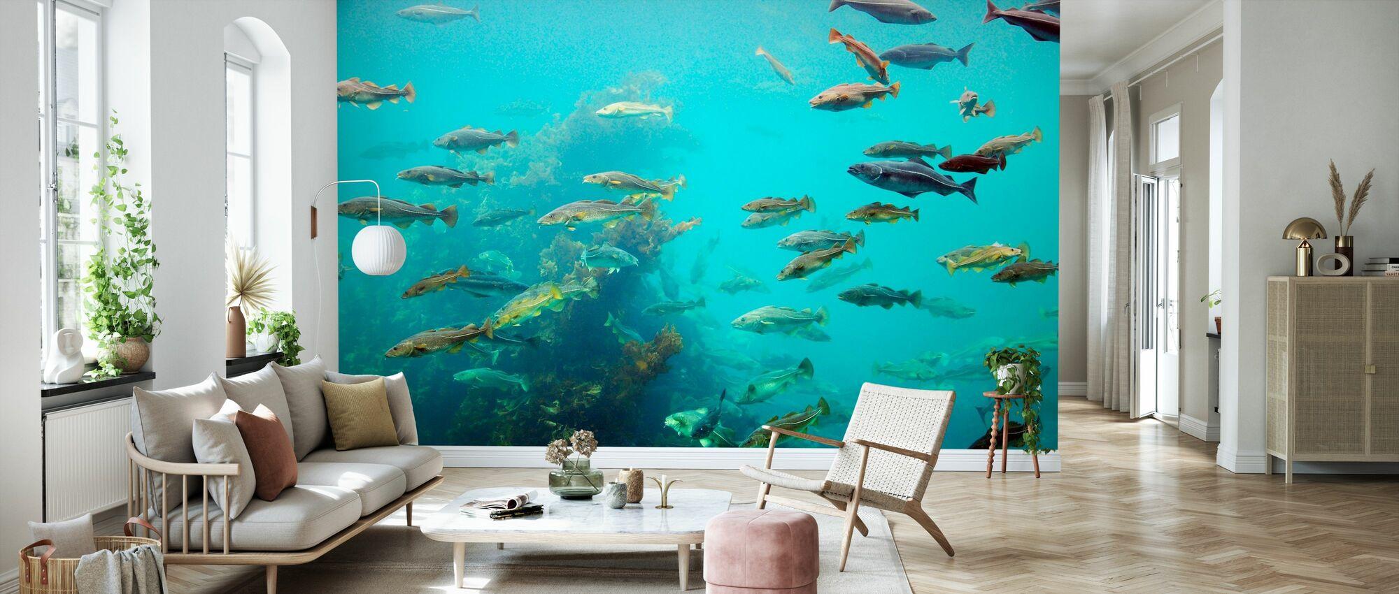 Circling Fish - Wallpaper - Living Room