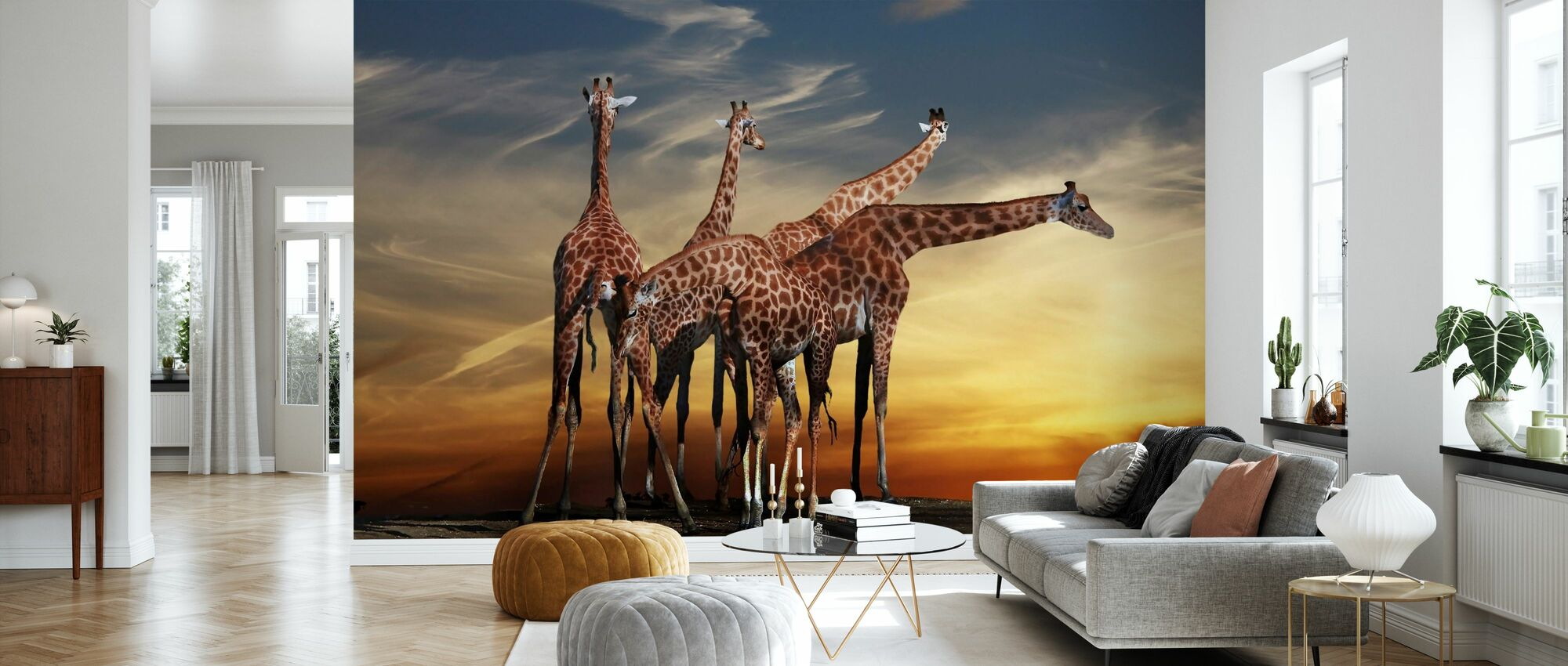 Giraffer og en visning - Tapet - Stue
