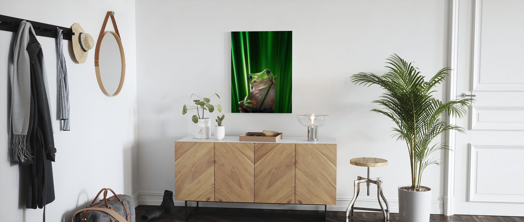Green Frog - Canvas print - Hallway