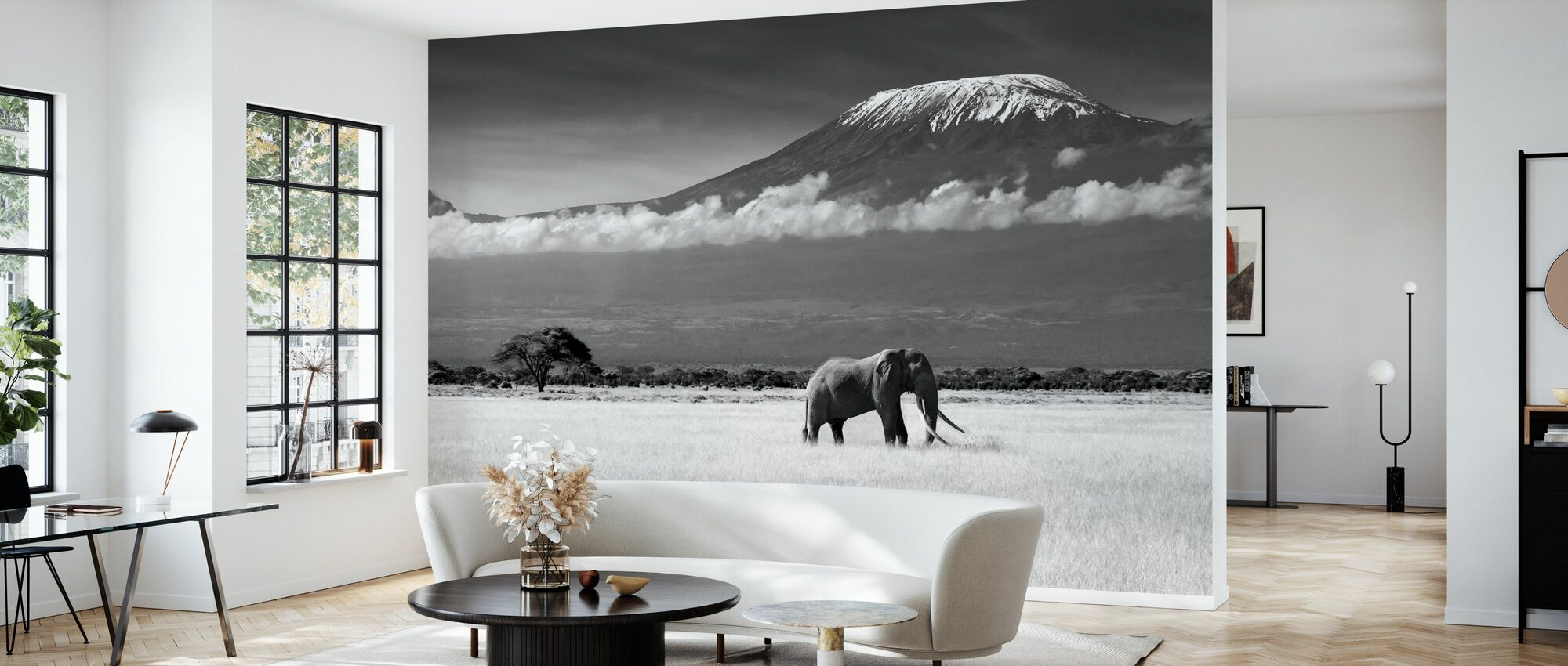 Elephant Landscape - Wallpaper - Living Room
