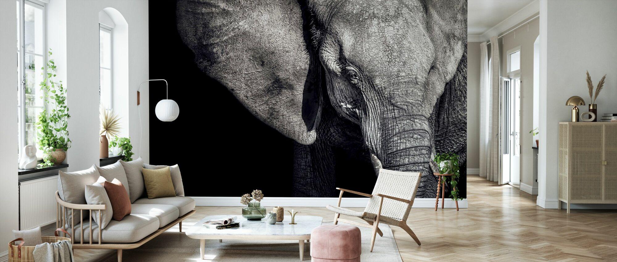 Bellissimo elefante - Carta da parati - Salotto
