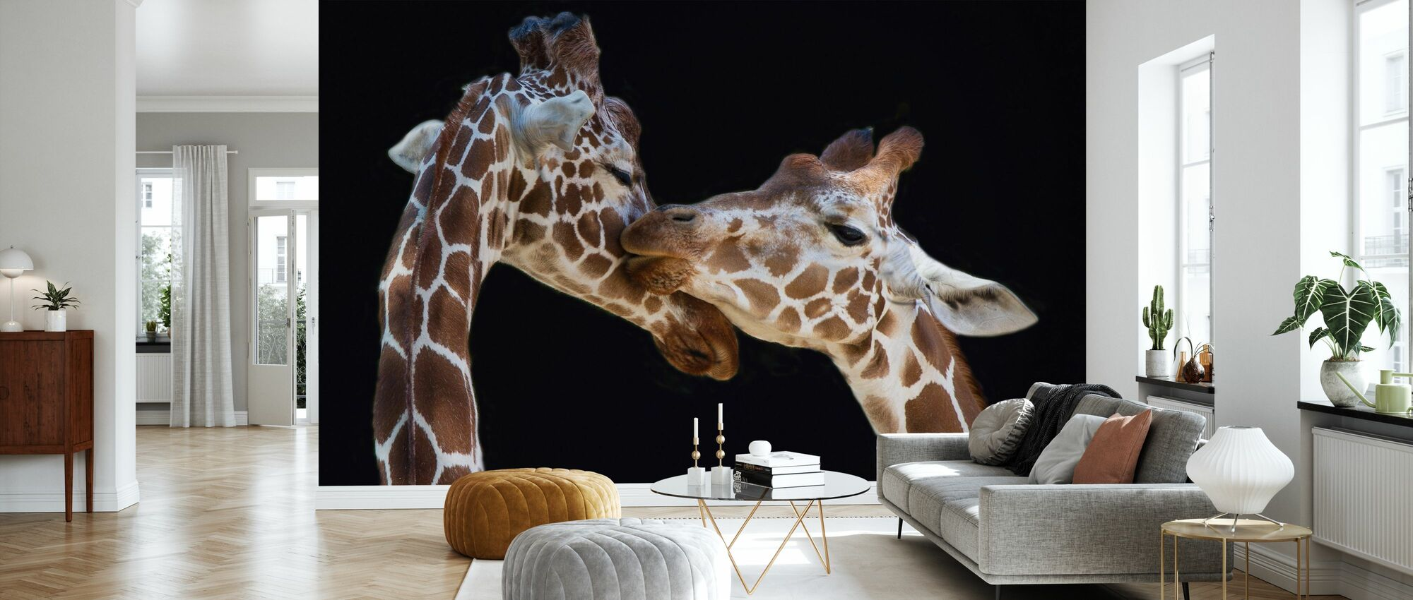 Giraffes Kissing - Wallpaper - Living Room