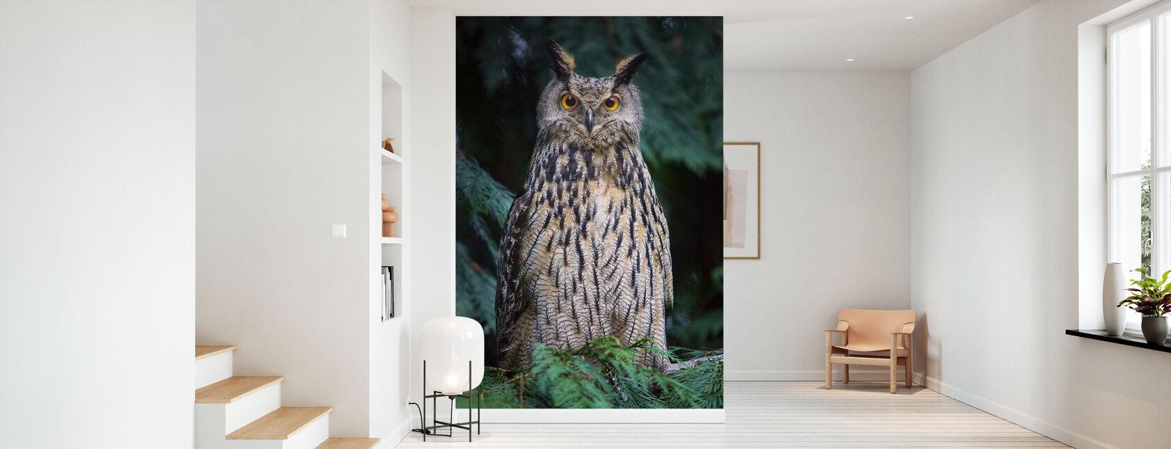 Owl - Wallpaper - Hallway