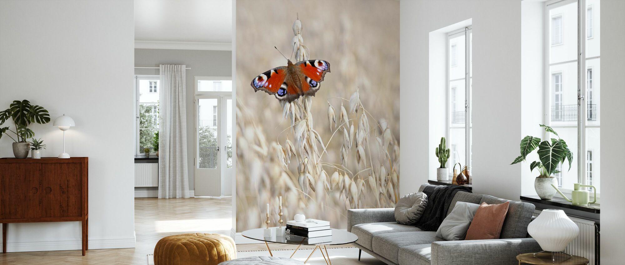Påfugl Butterfly På Havre - Tapet - Stue