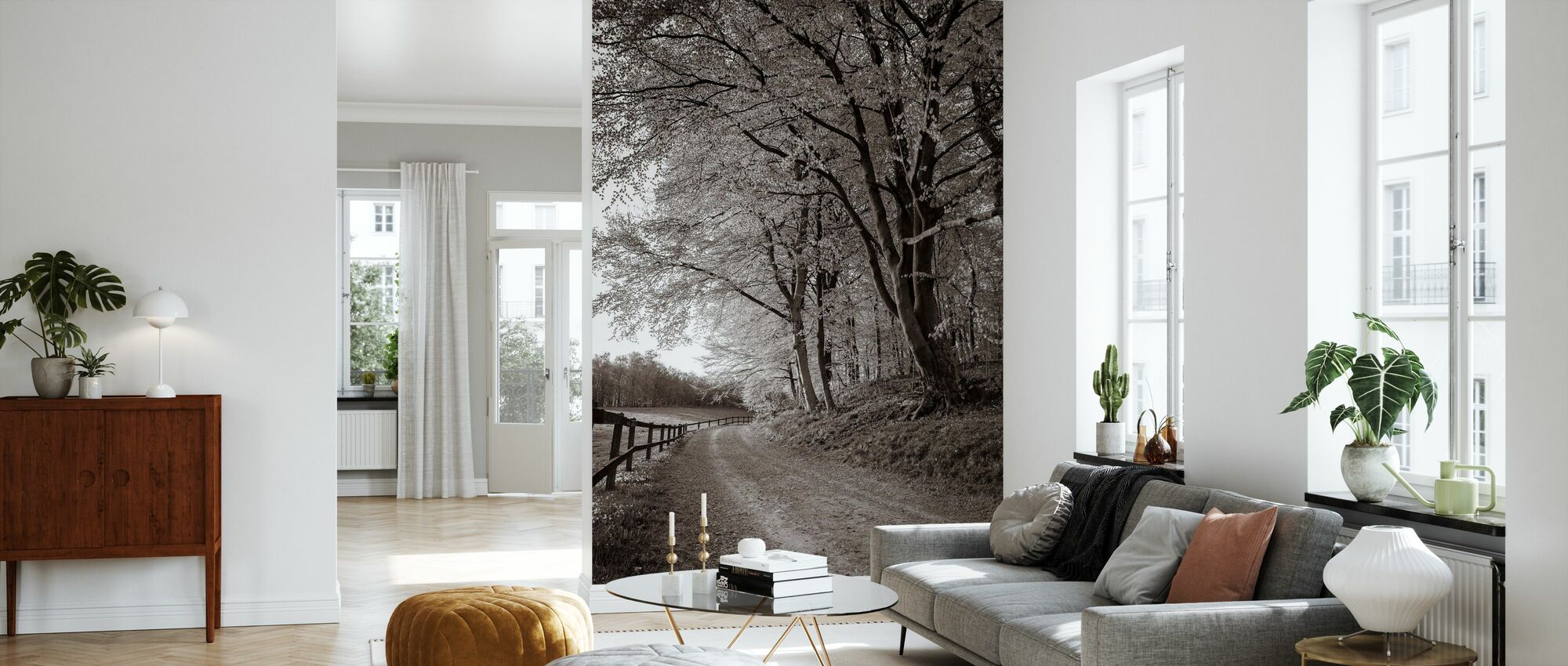 Country Road - Wallpaper - Living Room