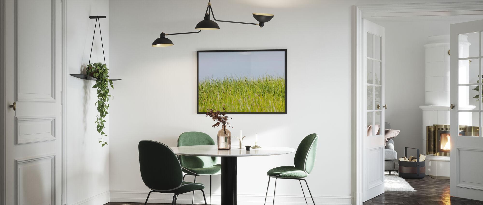 Grønn Sommer Eng - Plakat - Kjøkken