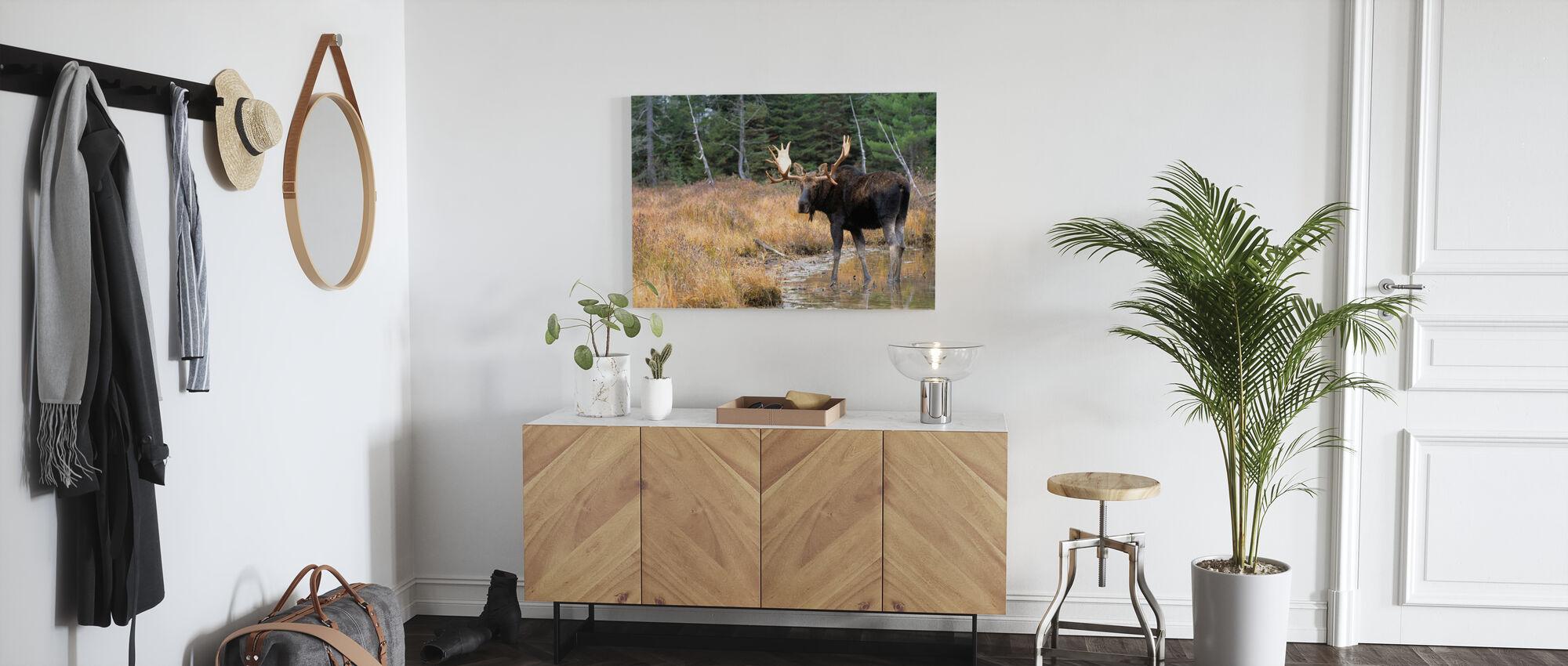 Moose in Woods - Canvas print - Hallway