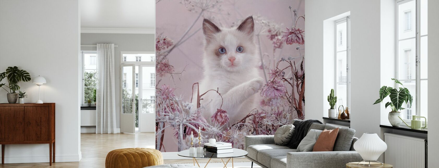 Pink Cat - Wallpaper - Living Room