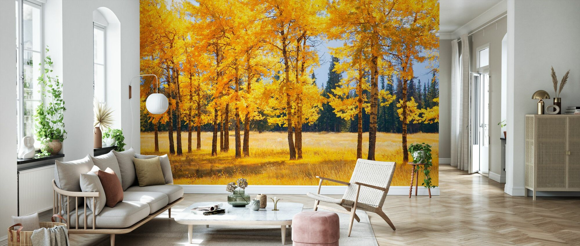 Gele Herfstbomen - Behang - Woonkamer