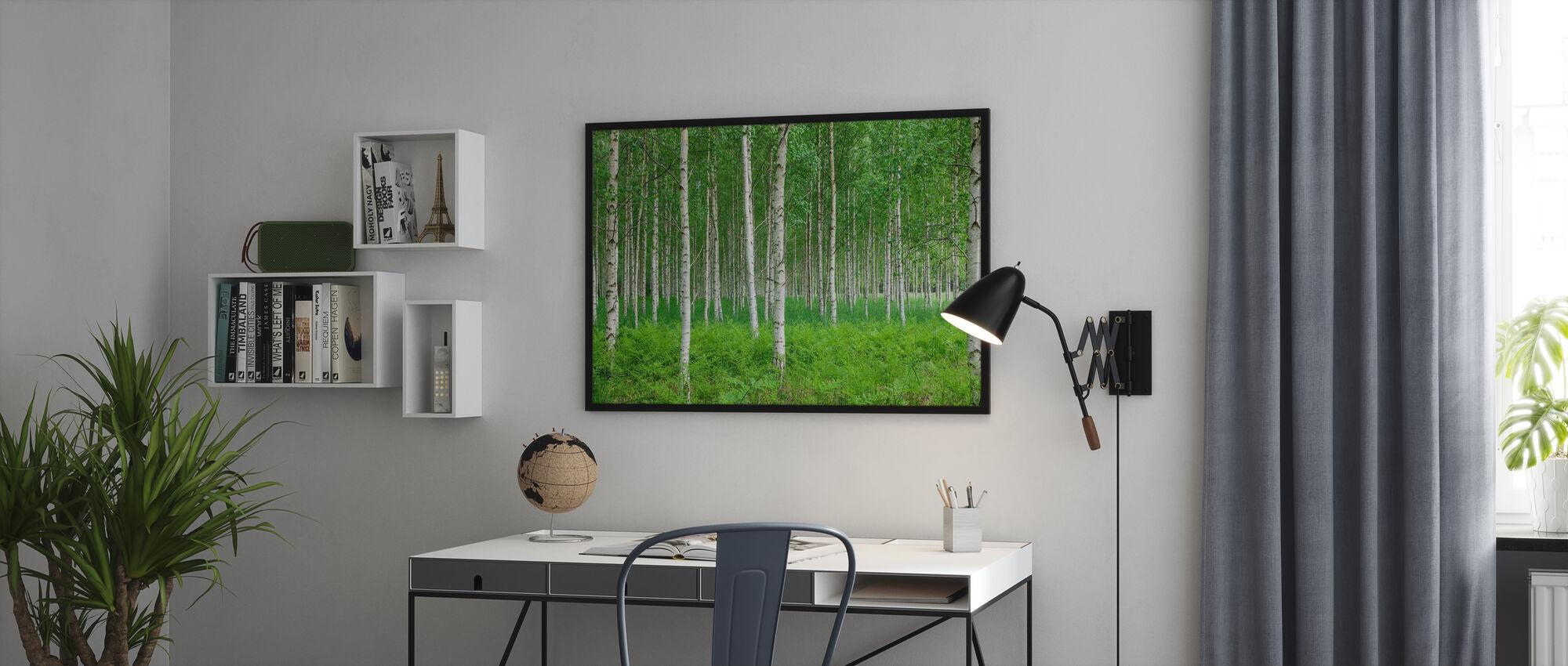 Sommar Björkskog - Inramad tavla - Kontor