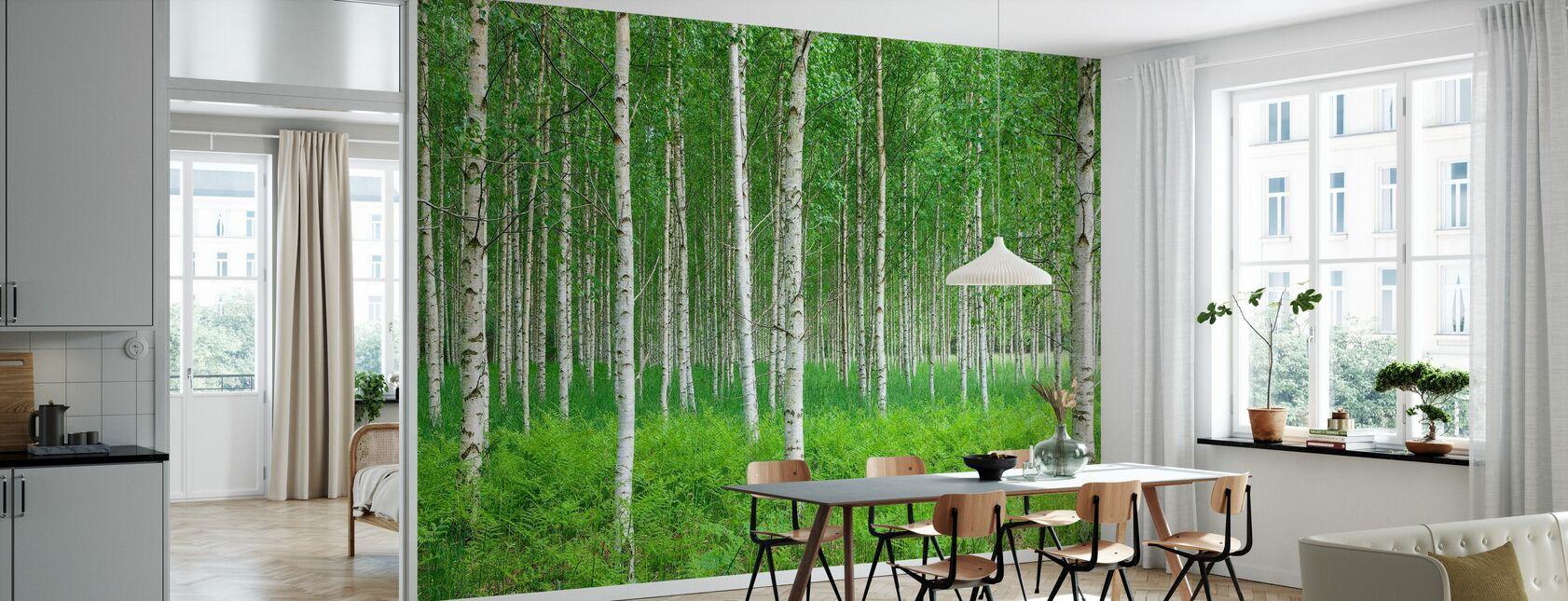 Sommer bjørkeskog - Tapet - Kjøkken