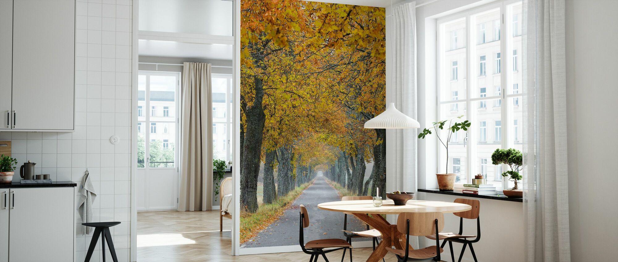 Autumn Avenue - Wallpaper - Kitchen