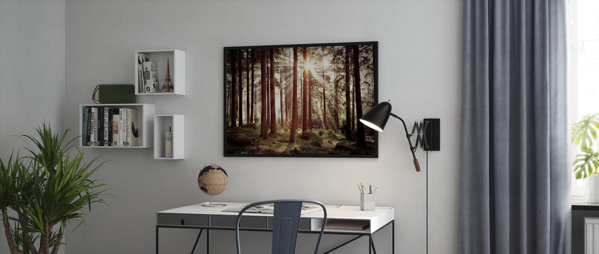 Solstrålen gennem træer - Retro - Plakat - Kontor