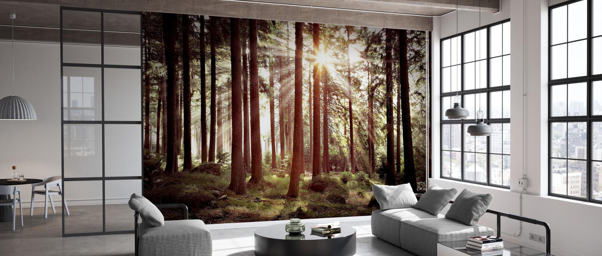 Sunbeam Through Trees - Retro - Wallpaper - Office