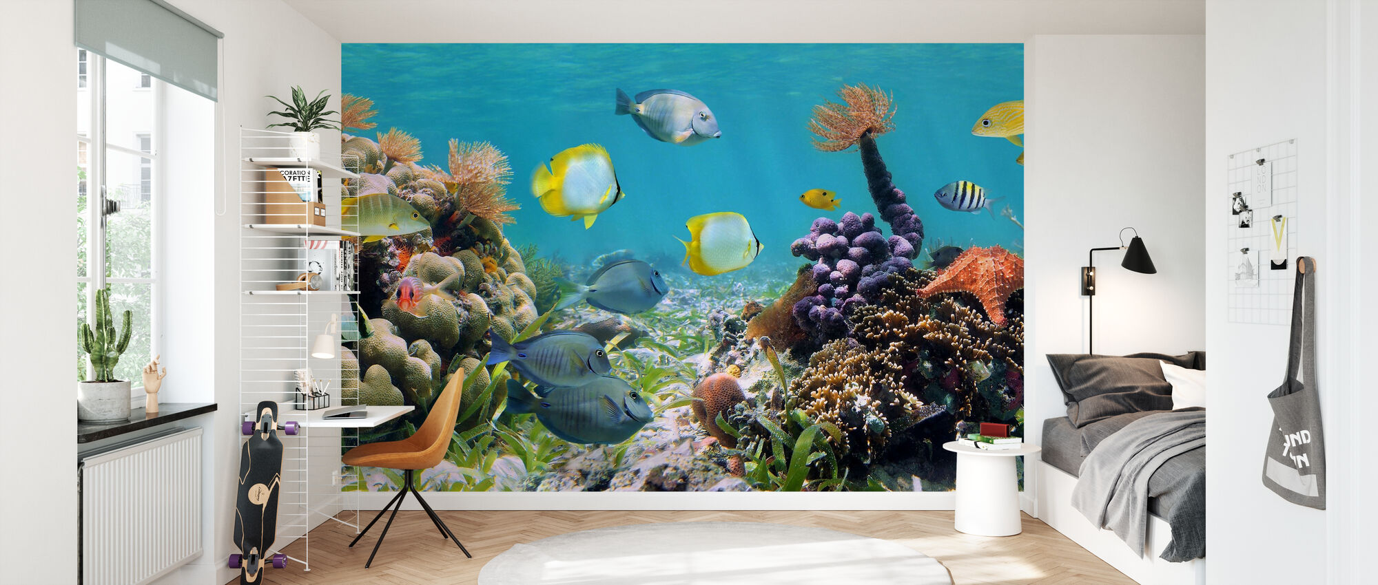 Panorama Coral Reef - Wallpaper - Kids Room