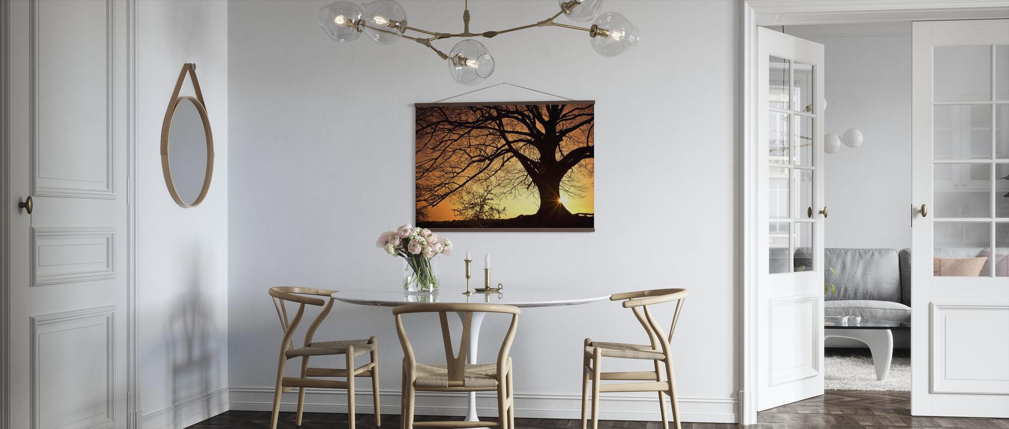 Silouette av et Willow Tree - Plakat - Kjøkken