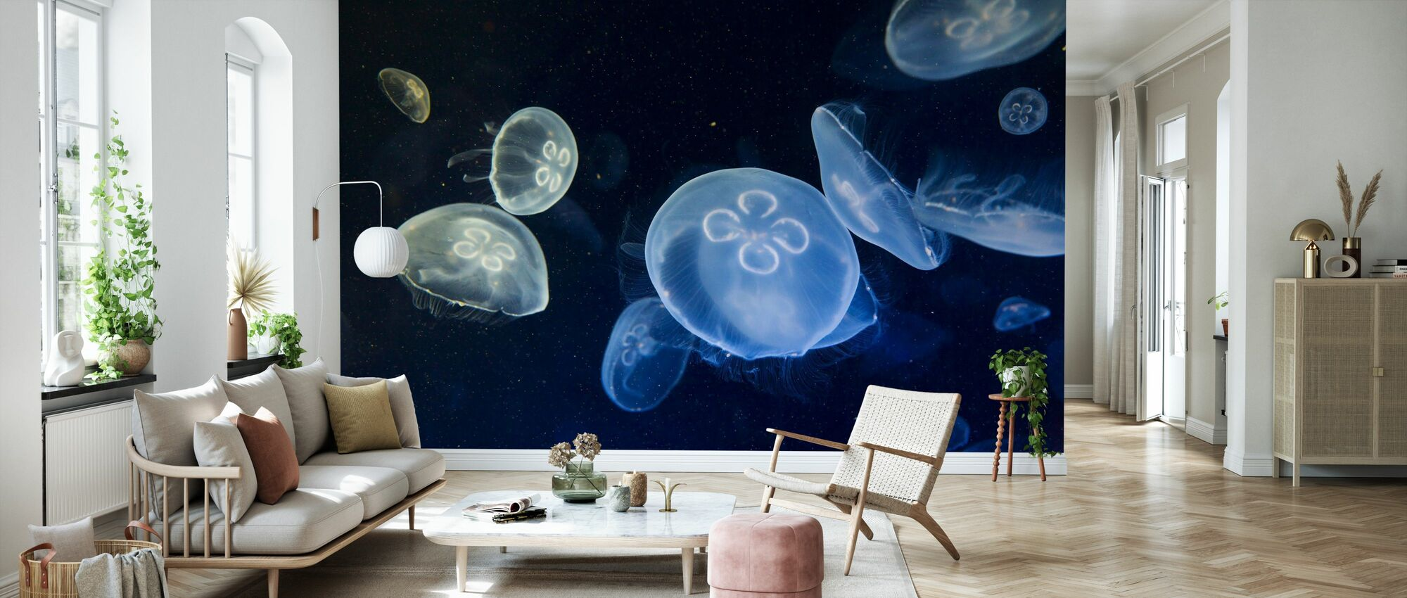 Floating Jellyfish - Wallpaper - Living Room