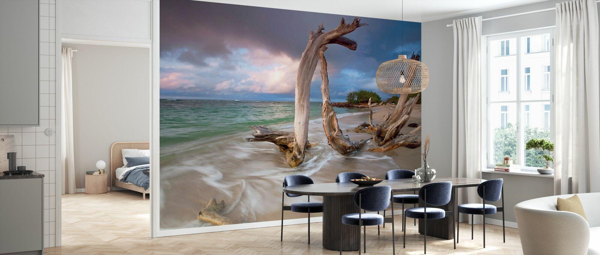 Driftwood Sunset - Wallpaper - Kitchen