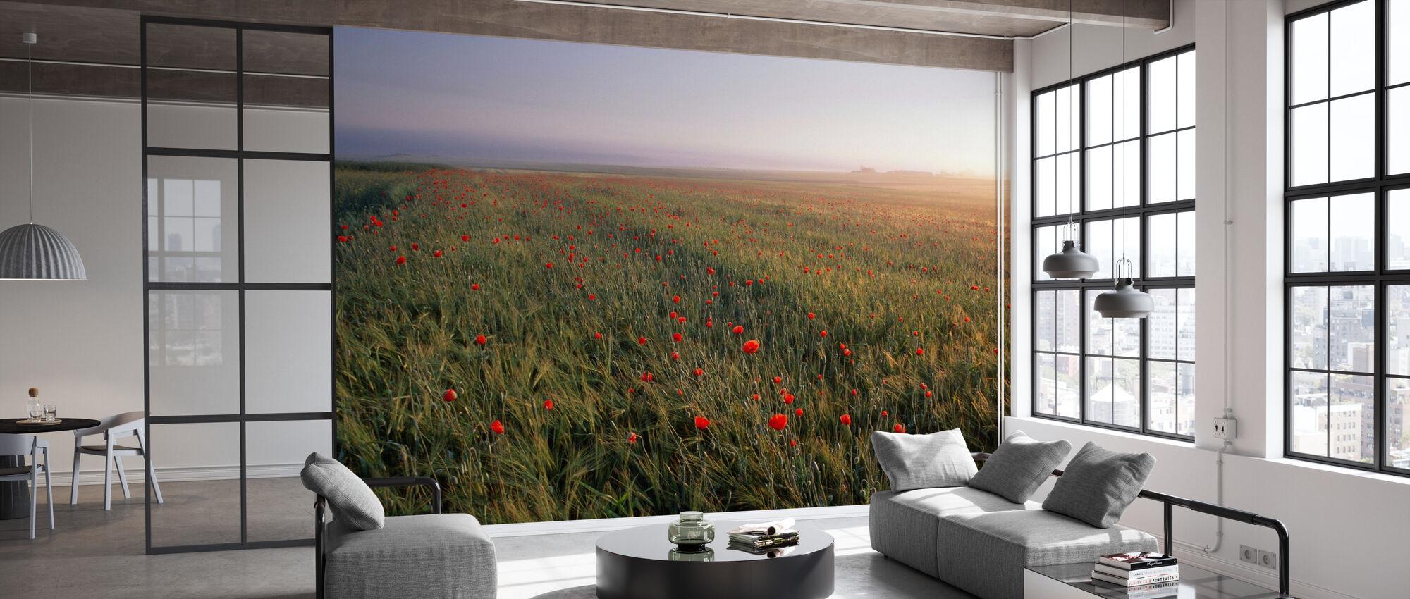 Dreamy Fields of Poppies - Wallpaper - Office
