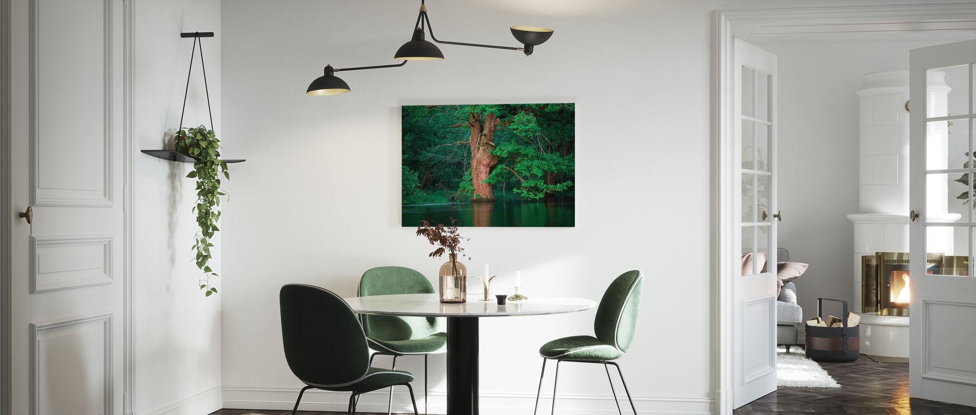 Oak Flooded by River - Canvas print - Kitchen